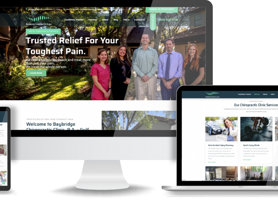 baybridge chiropractic clinic gulf breeze fl website- gulf breeze web design company